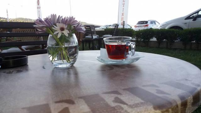 Etap Altınel Çanakkale'de Horoz sesi ile uyandım bu sabah