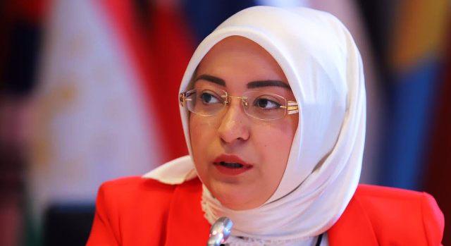 Milletvekili Çiğdem Erdoğan Atabek APA Toplantısında