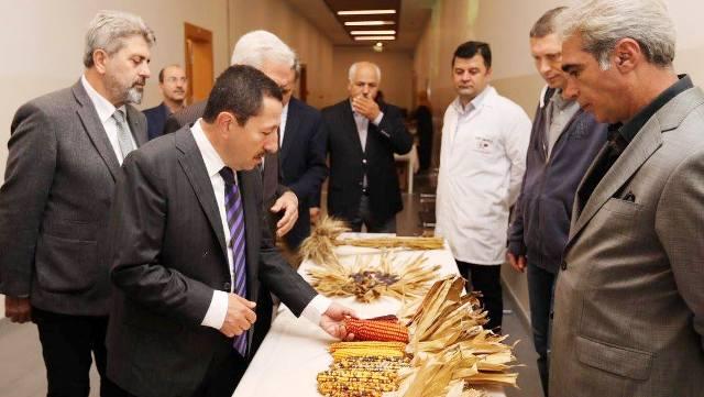 """Vali Balkanlıoğlu, """"Mısır Üretimi Konusunda Sakarya Çok Önemli Bir Konumda"""""""