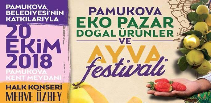 Pamukova EkoPazar Doğal Ürünler ve Ayva Festivali Tanıtımı Sürüyor