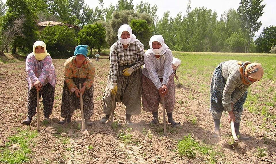 """TZOB Genel Başkanı Bayraktar: -""""Tarımın yükünü kadınlar omuzluyor"""""""