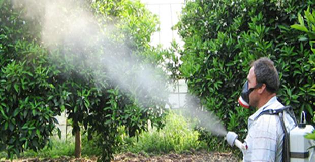 Tarım İlaçlarının Bilinçsizce Kullanımı Çevreyi Tehdit Ediyor