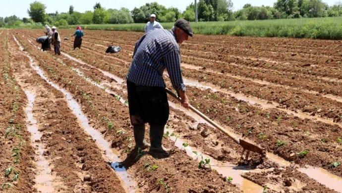 HES'ler Amasya'da tarımı bitirdi