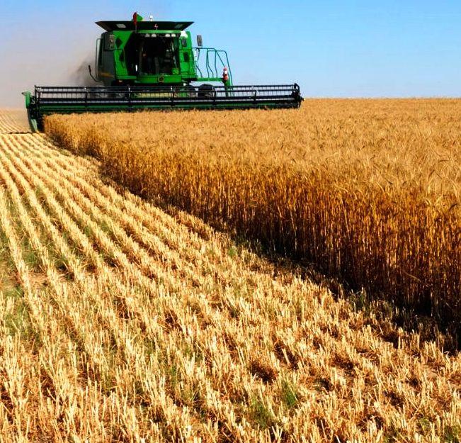 Türkiye'de tarım öğreniminin 172'nci yıldönümü