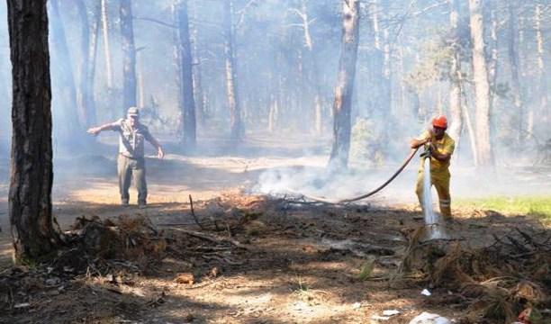 Tekirdağ'da 20 dönümlük ormanlık arazi yandı