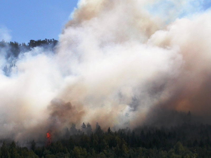Waldbrand bei Goslar