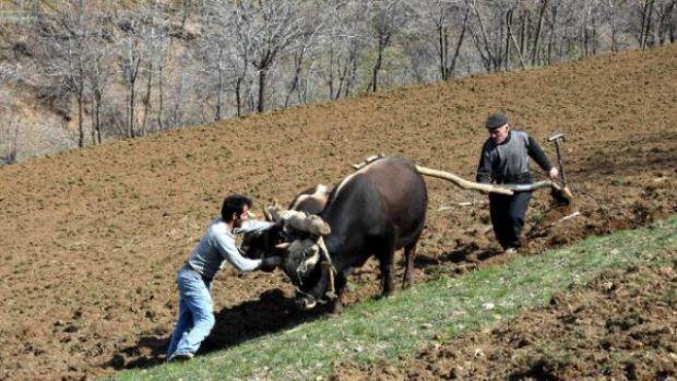 Bağkur'lu çiftçiye kredi sağlanmasını içeren işbirliği protokolü imzalandı.
