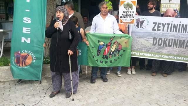 Yırca'da 'Zeytinime dokunma' protestosu