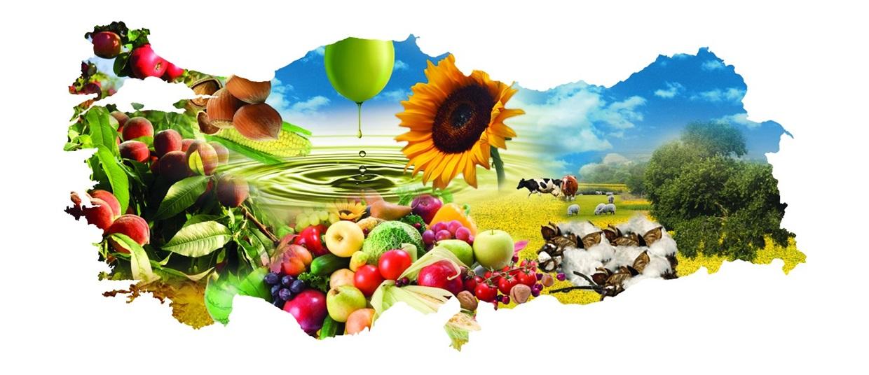 Tarımsal ürünün anavatanı Türkiye…