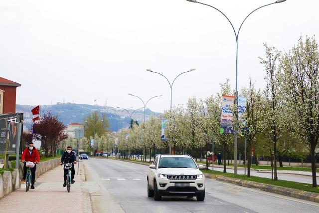 Çiçek açan ağaçlar görsel şölen sunuyor Gelen