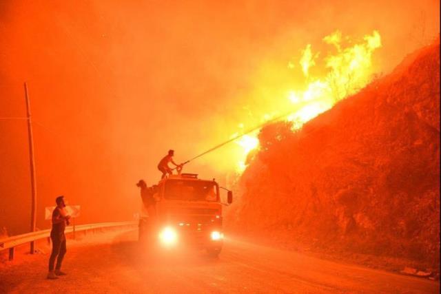 İklim krizinin de orman yangınlarının da sorumlusu küresel sermayedir